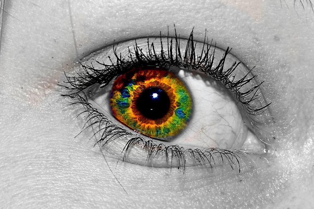 eye 234